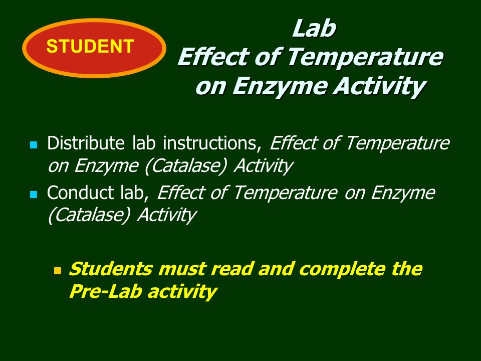 Lab Effect of Temperature on Enzyme Activity