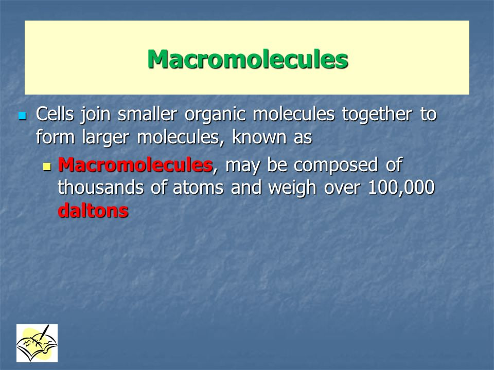 Macromolecules Cells join smaller organic molecules together to form larger molecules, known as.