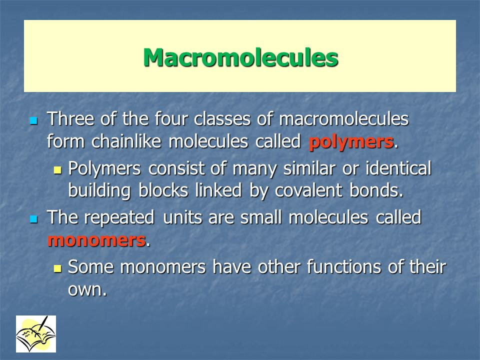 Macromolecules Three of the four classes of macromolecules form chainlike molecules called polymers.