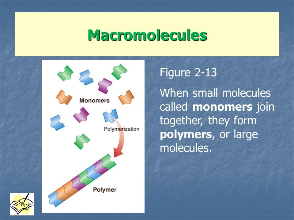 Macromolecules Figure 2-13