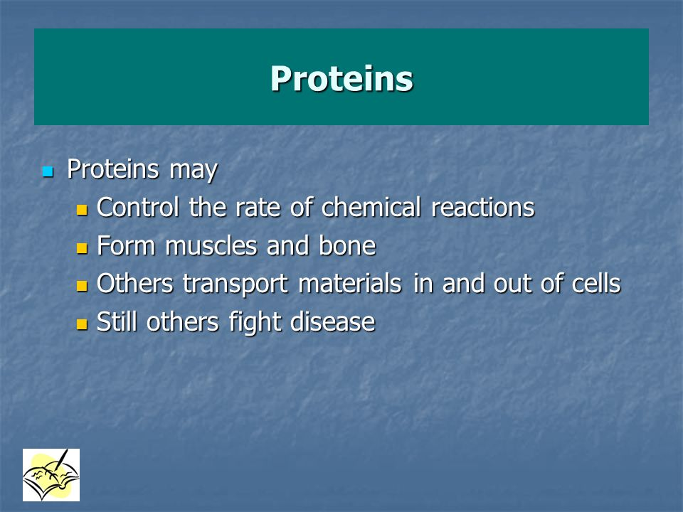 Proteins Proteins may Control the rate of chemical reactions