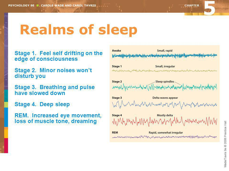 5 Realms of sleep. Stage 1. Feel self drifting on the edge of consciousness. Stage 2. Minor noises won't disturb you.