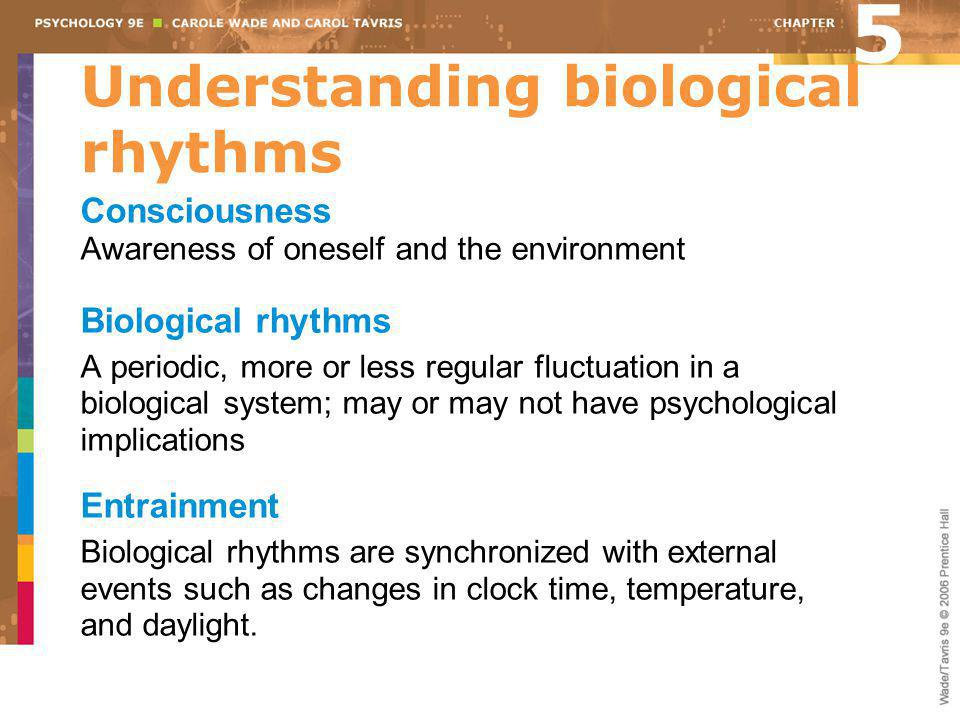 Understanding biological rhythms