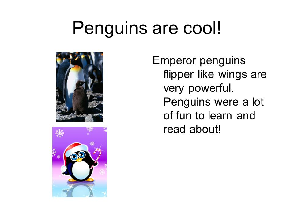 Penguins are cool. Emperor penguins flipper like wings are very powerful.