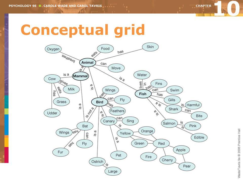 10 Conceptual grid