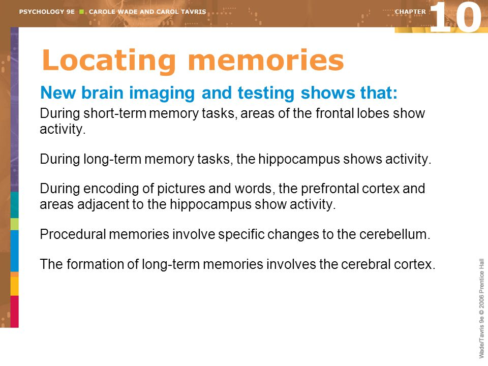 10 Locating memories New brain imaging and testing shows that: