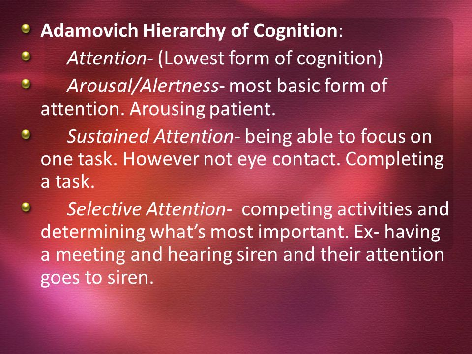 Adamovich Hierarchy of Cognition: