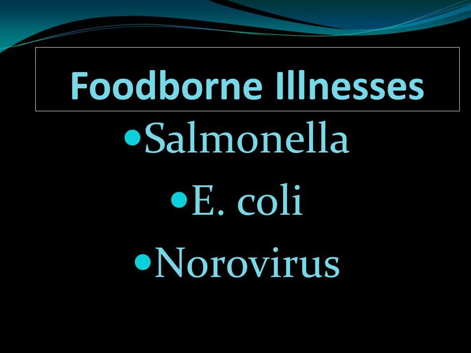 Foodborne Illnesses Salmonella E. coli Norovirus