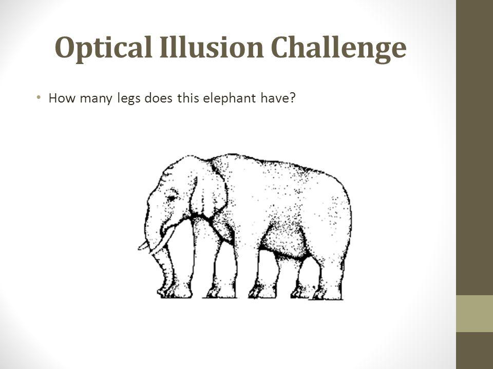 Optical Illusion Challenge