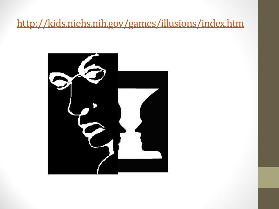 http://kids.niehs.nih.gov/games/illusions/index.htm