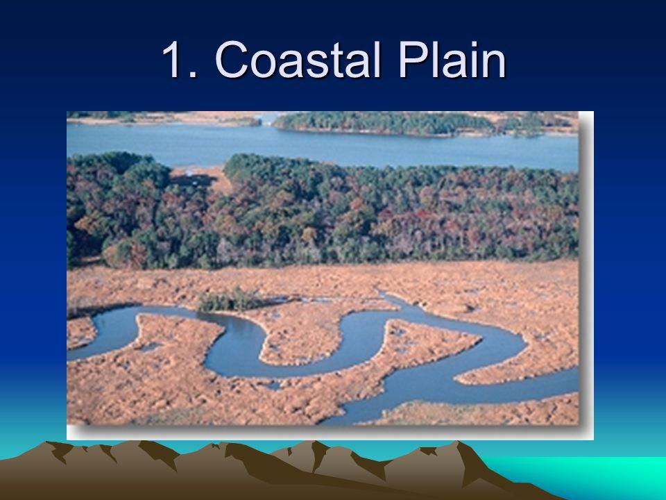 1. Coastal Plain