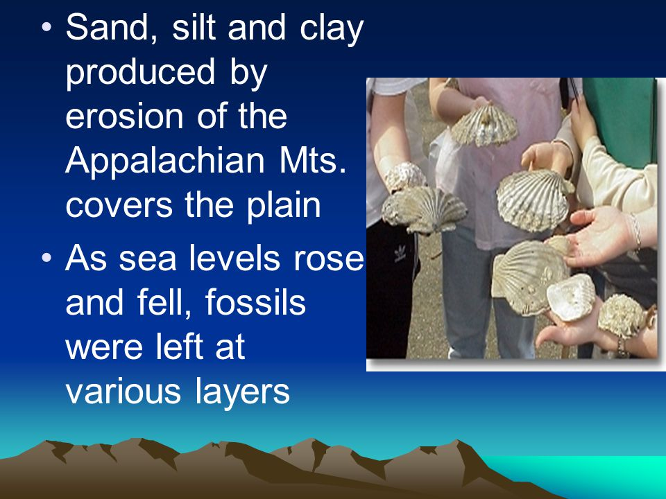Sand, silt and clay produced by erosion of the Appalachian Mts