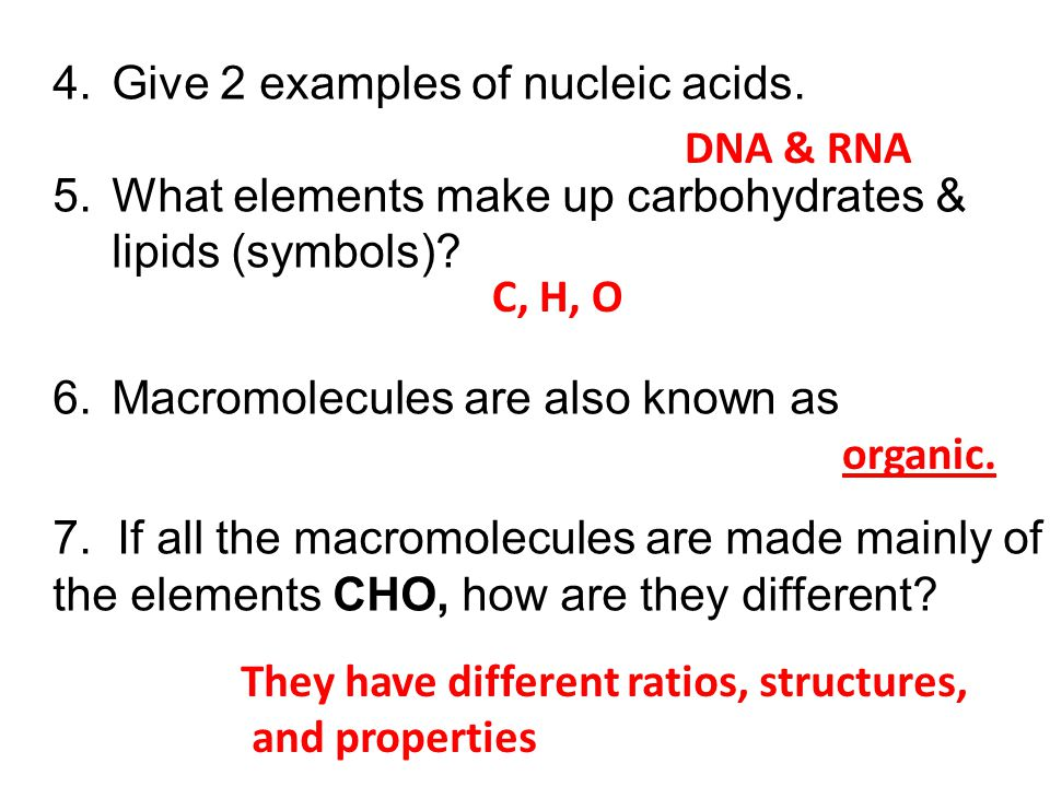 Give 2 examples of nucleic acids.