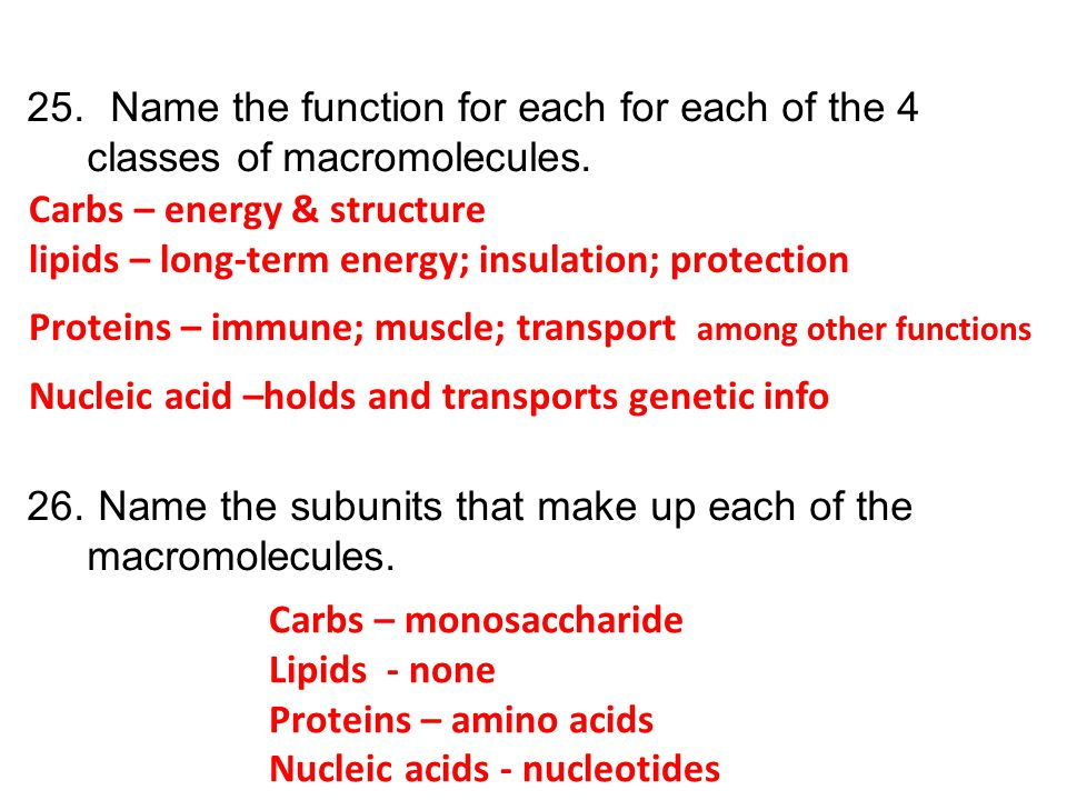 Name the function for each for each of the 4 classes of macromolecules.