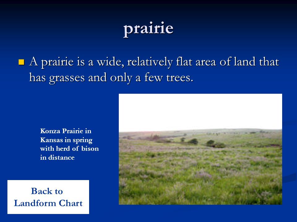 prairie A prairie is a wide, relatively flat area of land that has grasses and only a few trees.