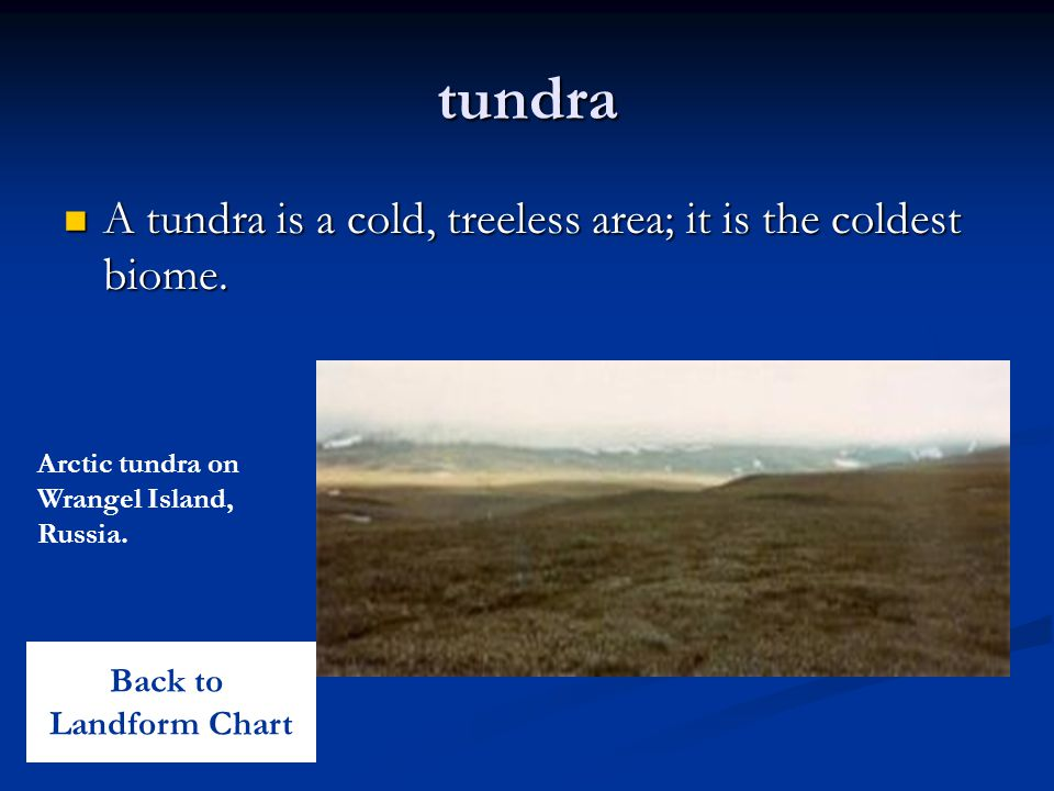 tundra A tundra is a cold, treeless area; it is the coldest biome.