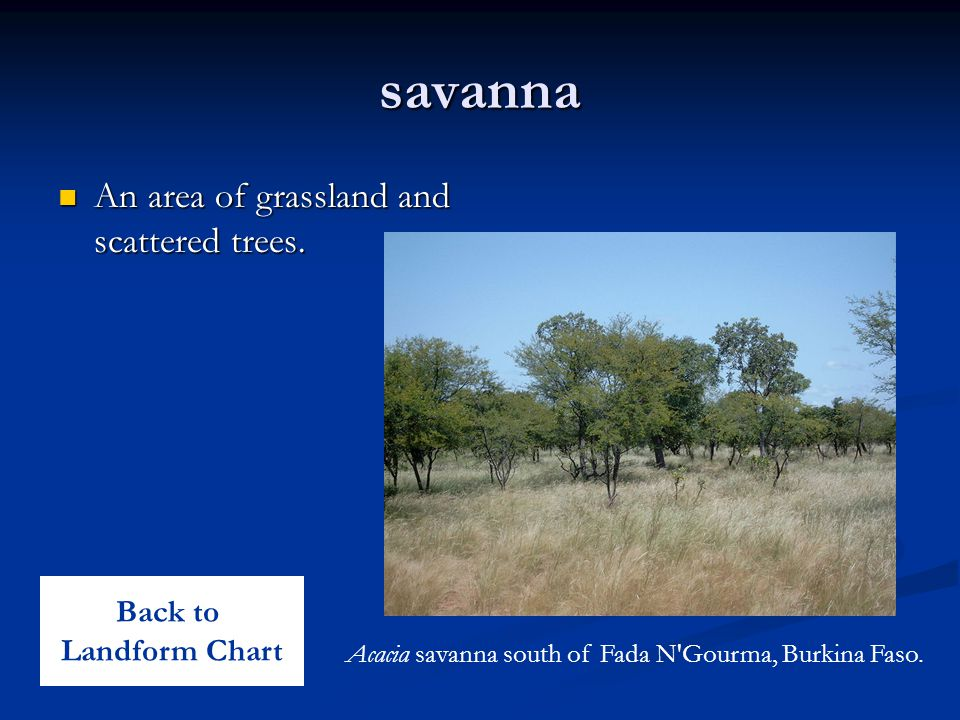 savanna An area of grassland and scattered trees. Back to