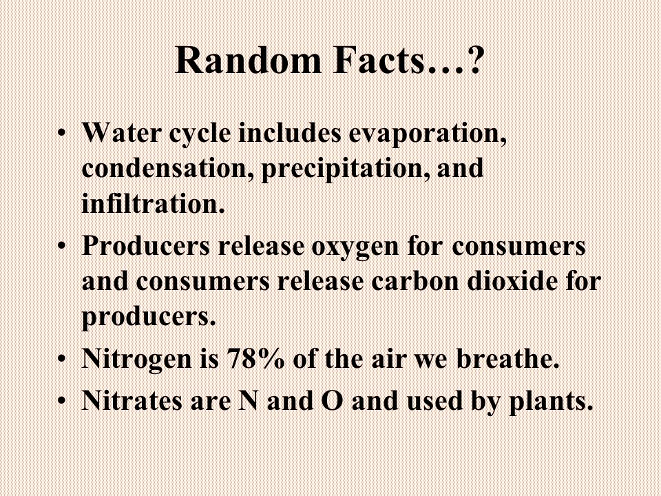 Random Facts… Water cycle includes evaporation, condensation, precipitation, and infiltration.