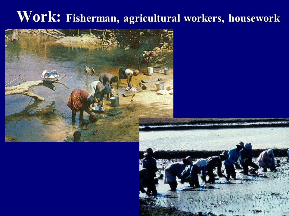 Work: Fisherman, agricultural workers, housework