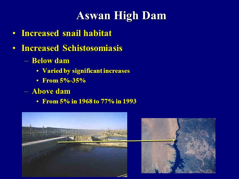 Aswan High Dam Increased snail habitat Increased Schistosomiasis