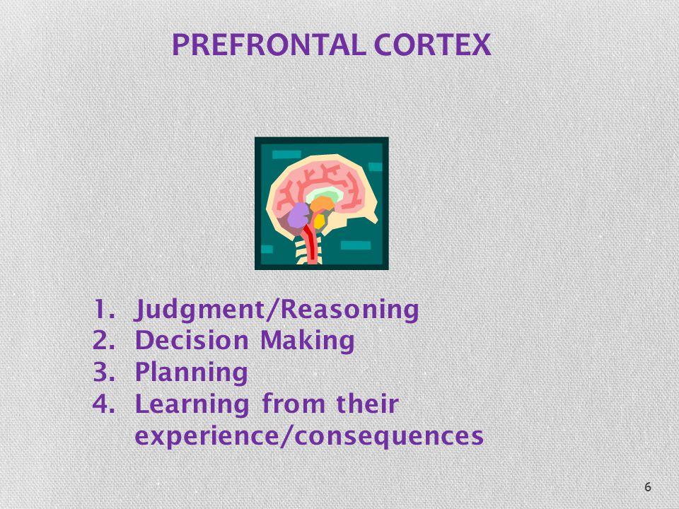 PREFRONTAL CORTEX Judgment/Reasoning Decision Making Planning