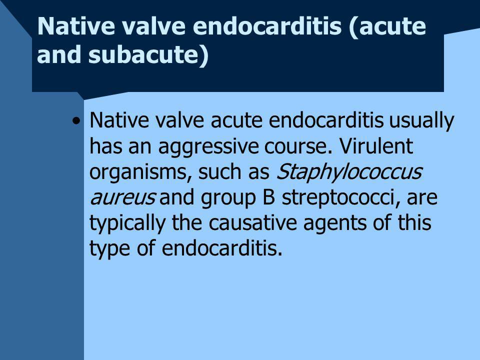 Native valve endocarditis (acute and subacute)