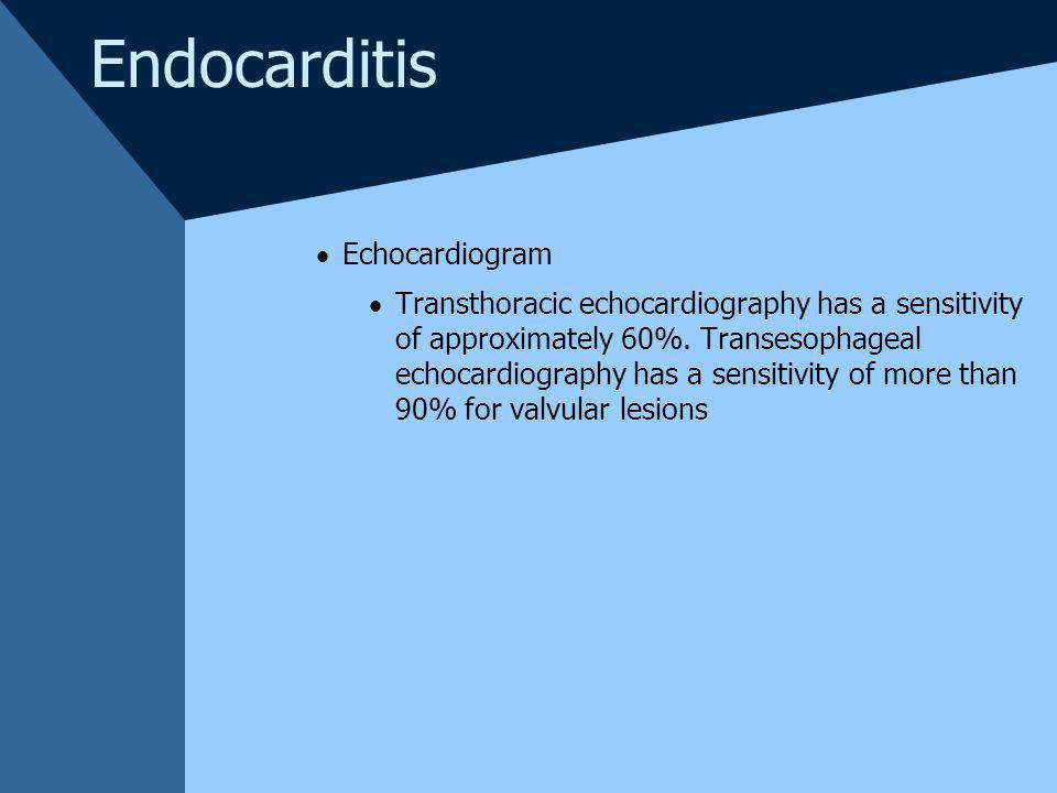 Endocarditis Echocardiogram