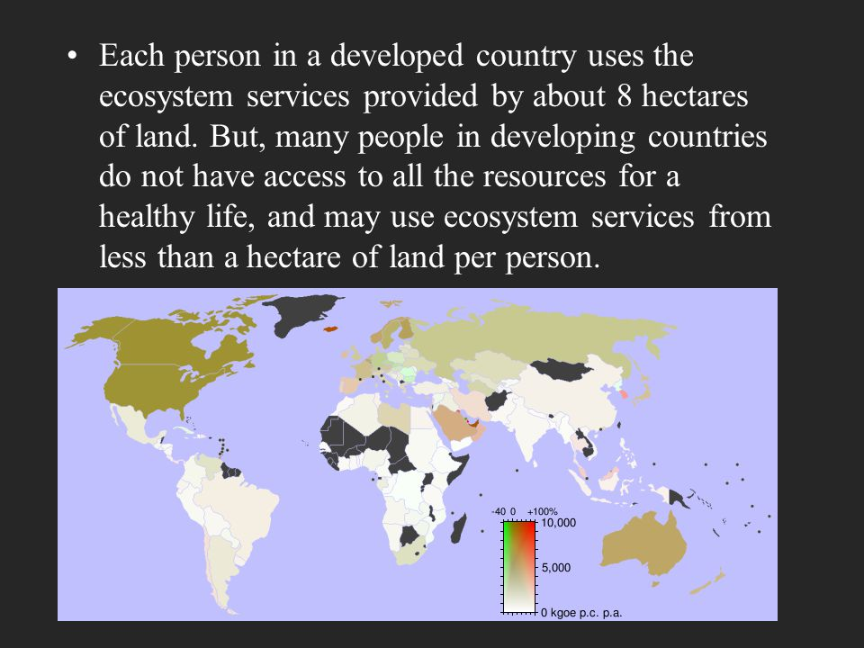 Each person in a developed country uses the ecosystem services provided by about 8 hectares of land.