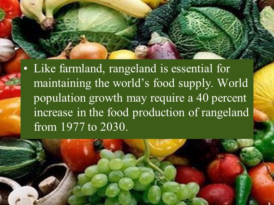Like farmland, rangeland is essential for maintaining the world's food supply.