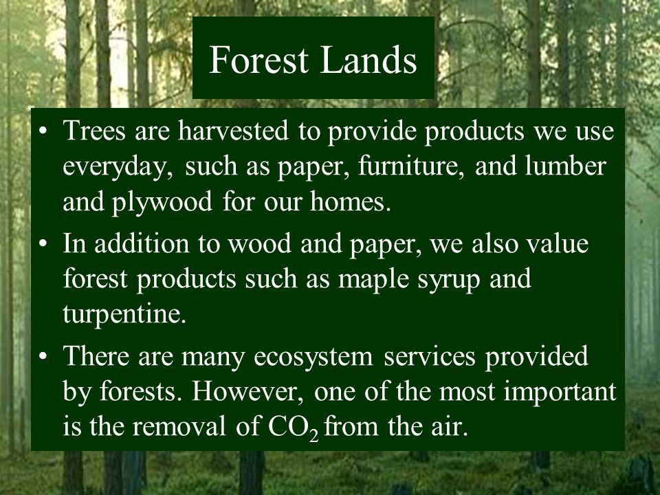 Land chapter ppt download for What do we use trees for