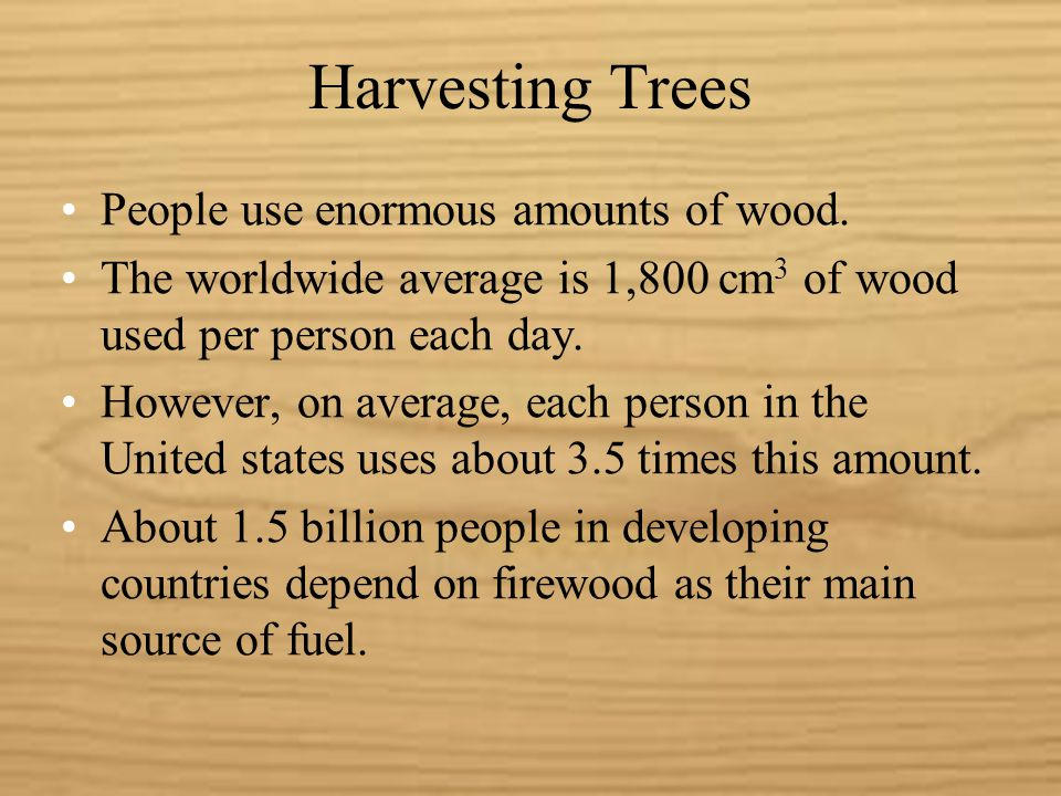 Harvesting Trees People use enormous amounts of wood.
