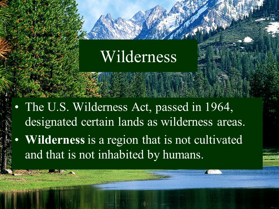 Wilderness The U.S. Wilderness Act, passed in 1964, designated certain lands as wilderness areas.