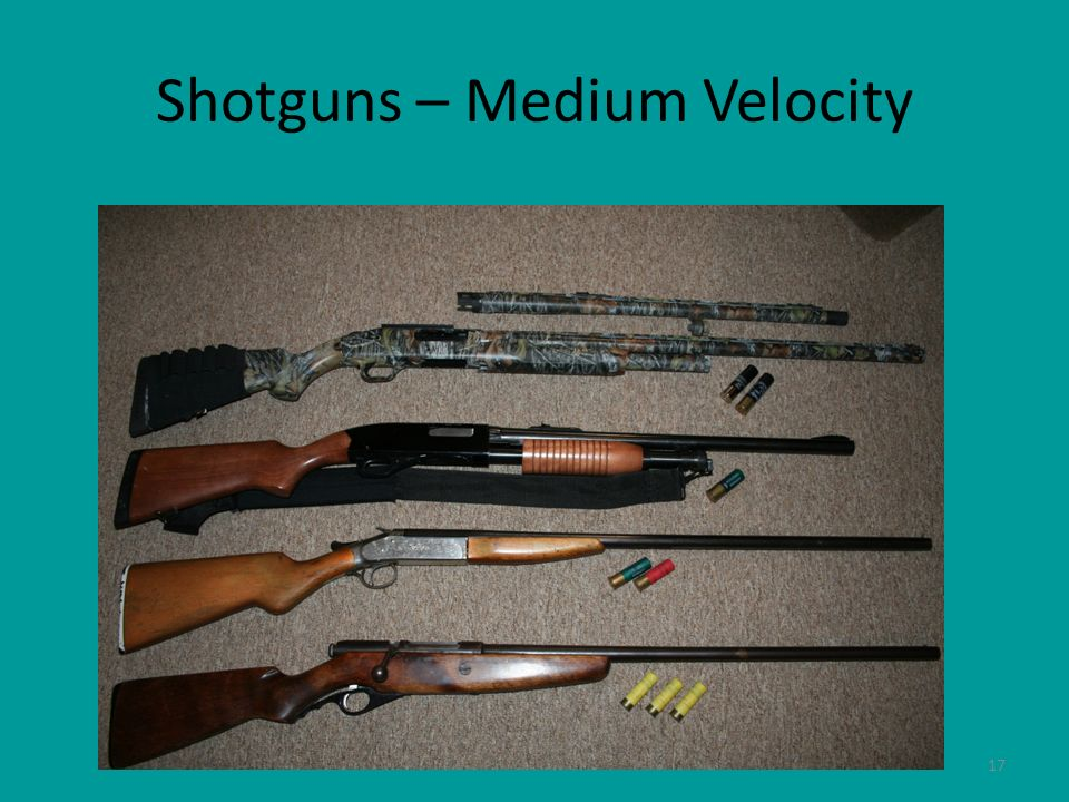 Shotguns – Medium Velocity