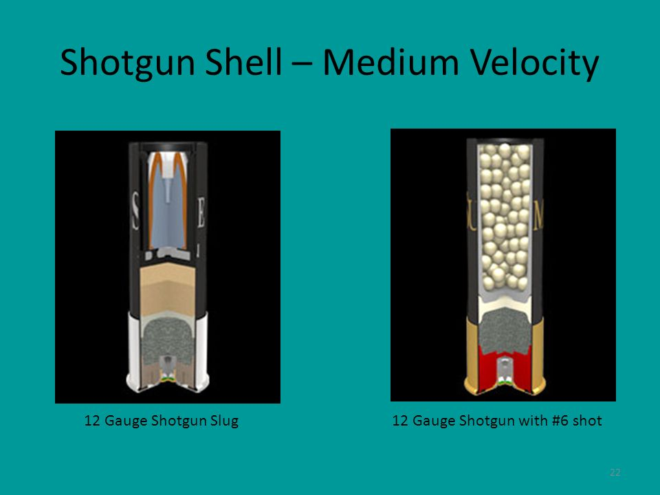 Shotgun Shell – Medium Velocity