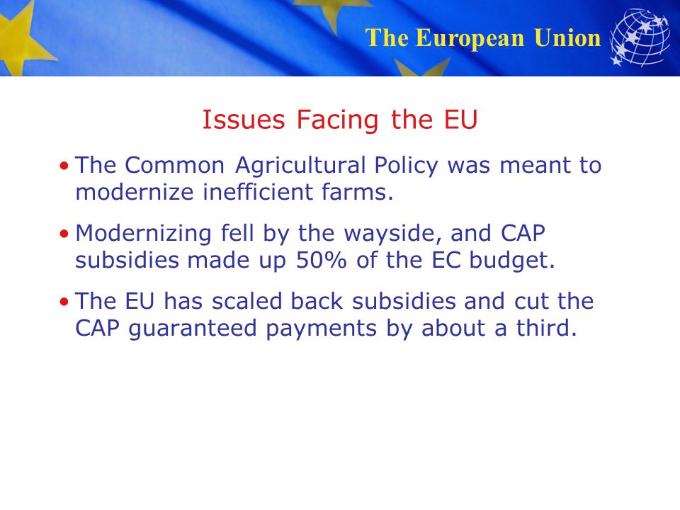 Issues Facing the EU The Common Agricultural Policy was meant to modernize inefficient farms.
