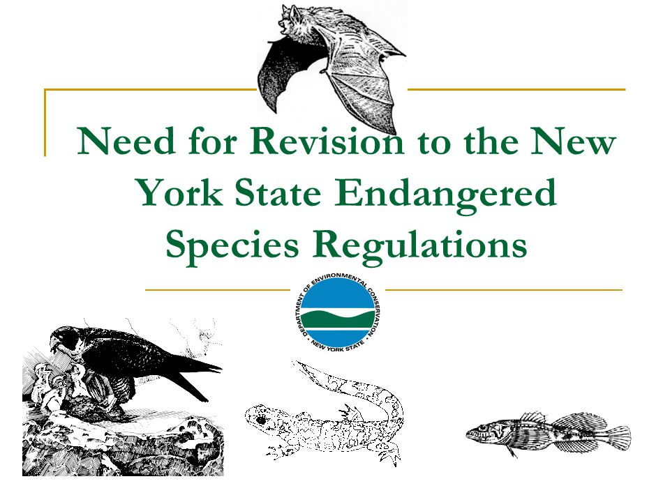 Need for Revision to the New York State Endangered Species Regulations