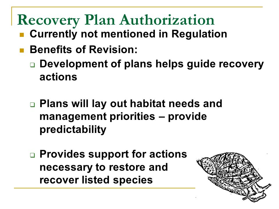 Recovery Plan Authorization