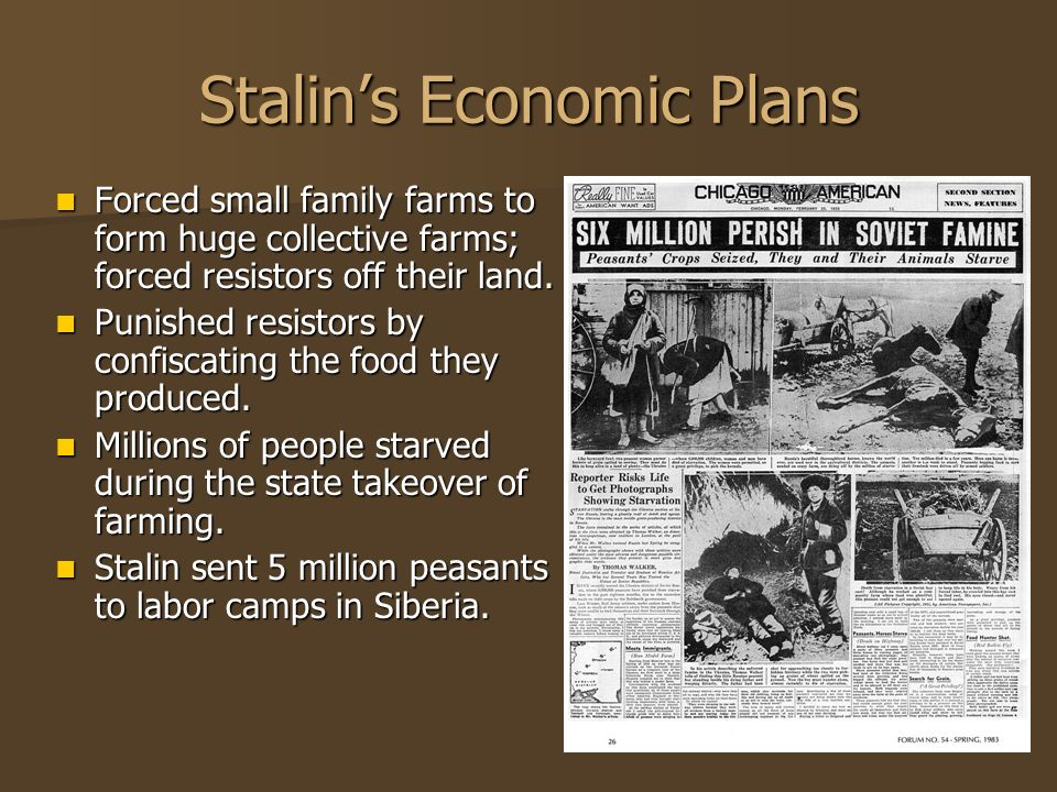 Stalin's Economic Plans