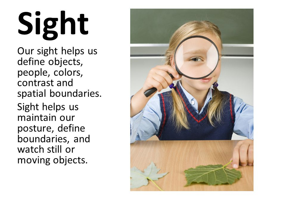 Sight Our sight helps us define objects, people, colors, contrast and spatial boundaries.