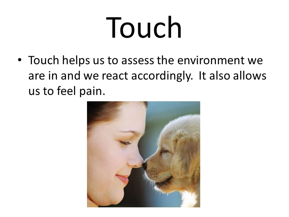 Touch Touch helps us to assess the environment we are in and we react accordingly.