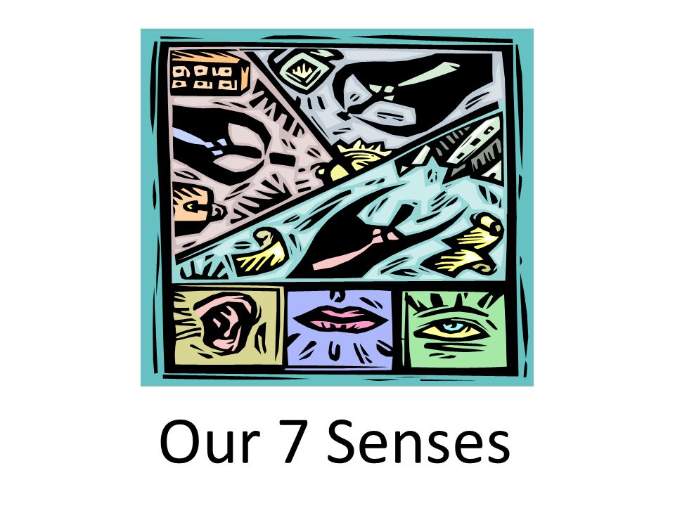 Our 7 Senses