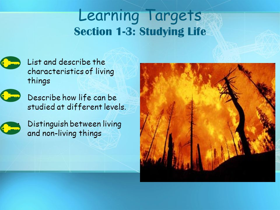 Learning Targets Section 1-3: Studying Life