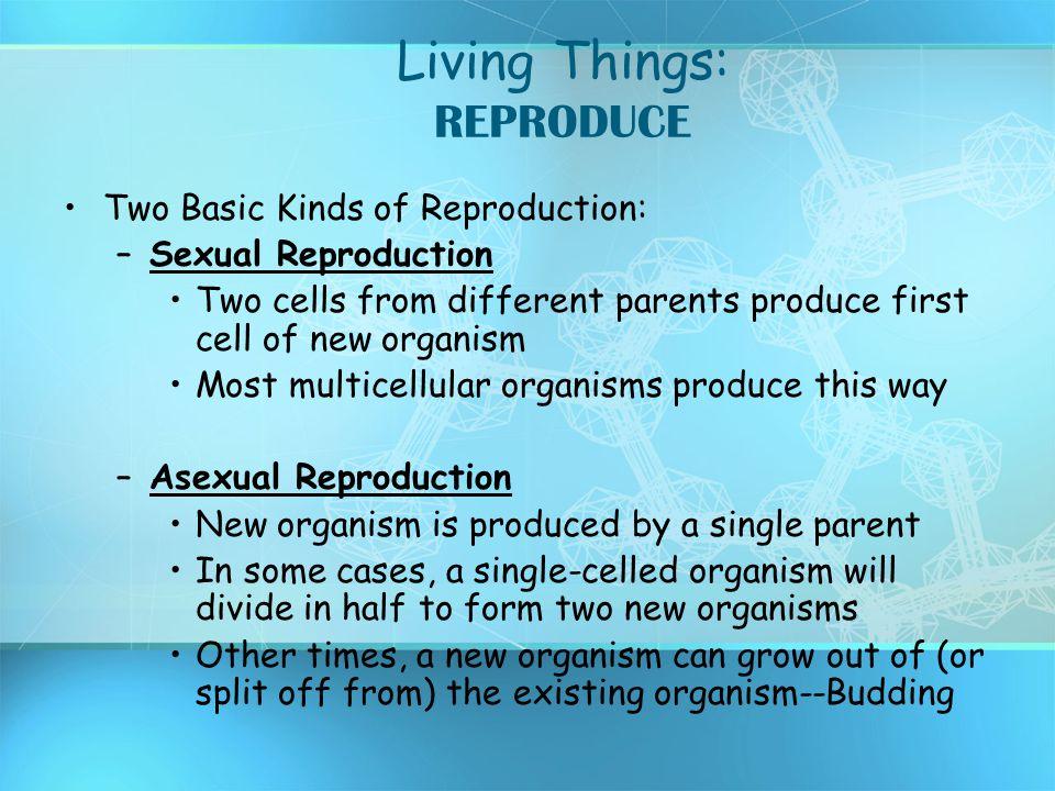 Living Things: REPRODUCE