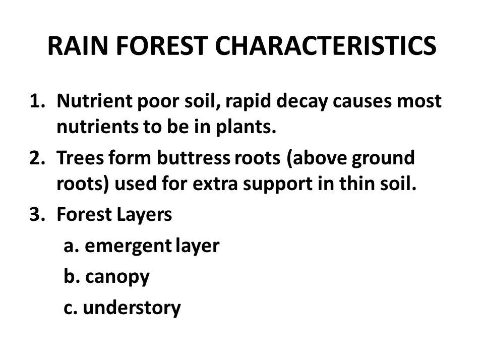RAIN FOREST CHARACTERISTICS