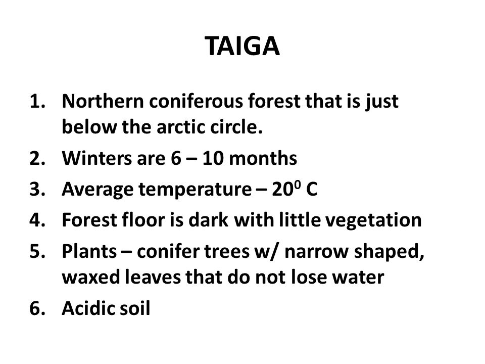 TAIGA Northern coniferous forest that is just below the arctic circle.
