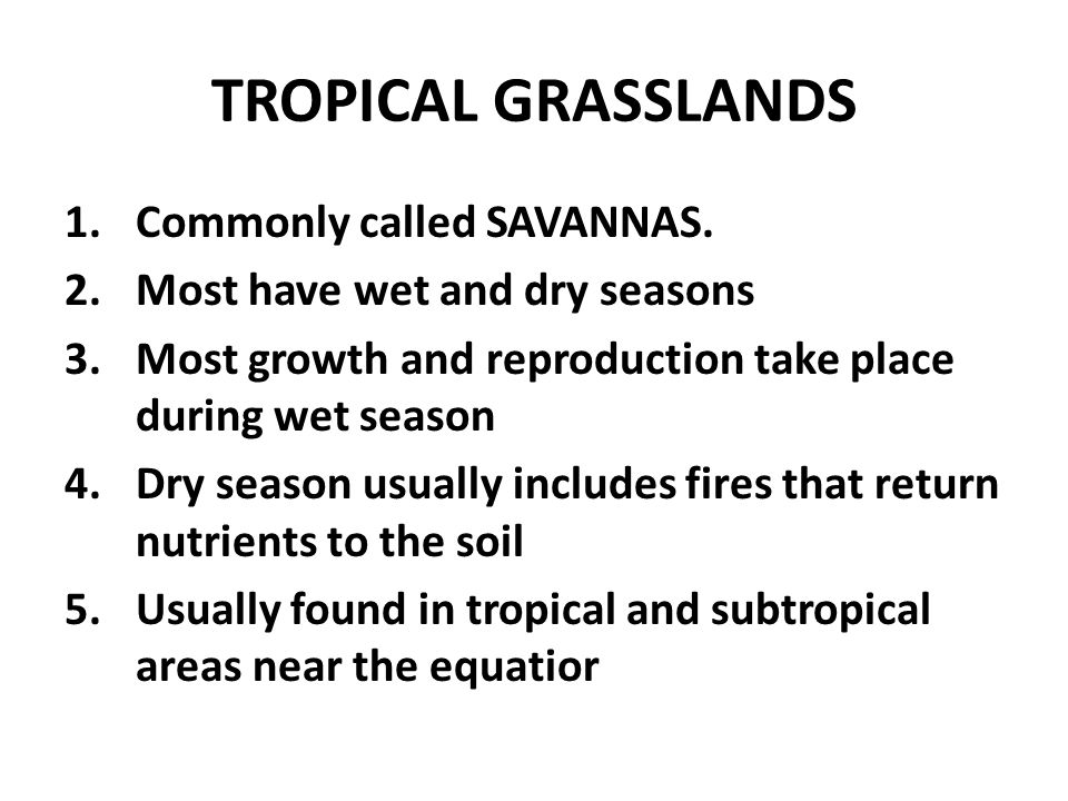 TROPICAL GRASSLANDS Commonly called SAVANNAS.