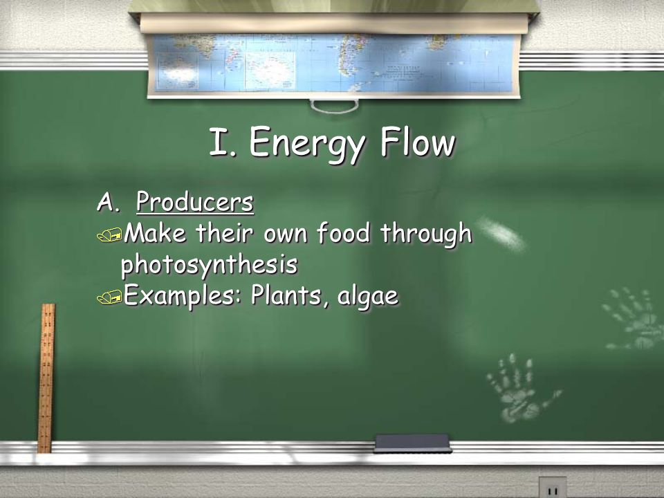 I. Energy Flow A. Producers Make their own food through photosynthesis