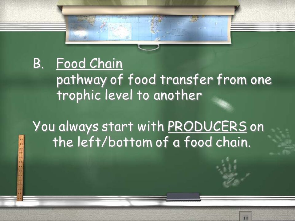 B. Food Chain pathway of food transfer from one.