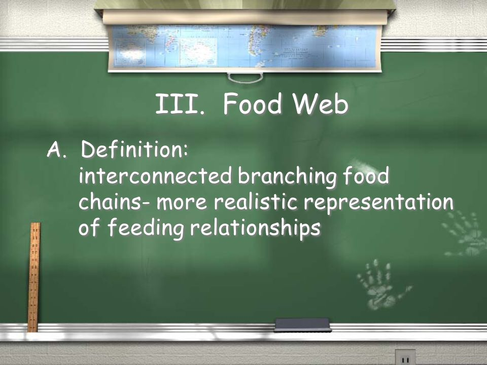 III. Food Web A. Definition: