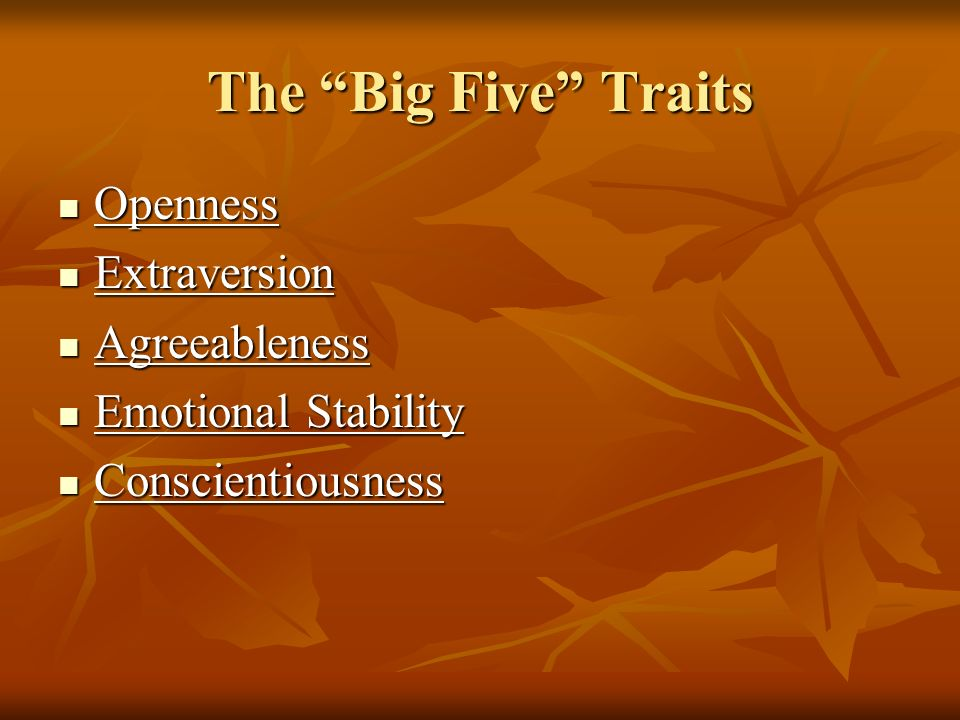The Big Five Traits Openness Extraversion Agreeableness